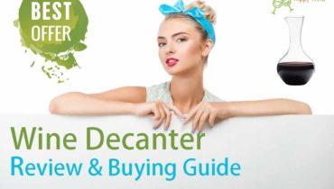 wine decanter review and buying guide