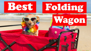 best-folding-wagon-review